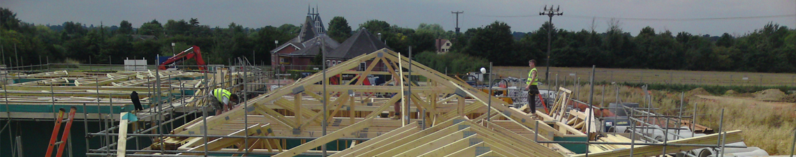 scaffolding with roofing beams effected and trees in the backgrouund